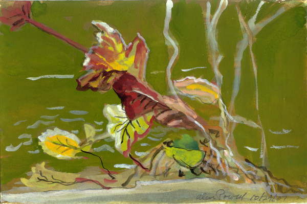 October 29, 2007; Leaves by Alan Powell