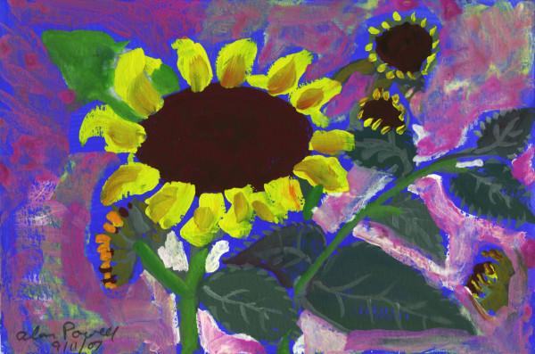 September 11, 2007; Sunflowers by Alan Powell