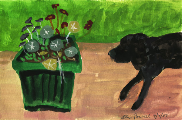 September 7 2007; BJ Smelling Flowers by Alan Powell
