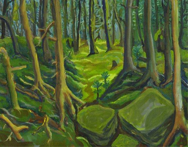 Woods on Bell's Island Nova Scotia by Alan Powell