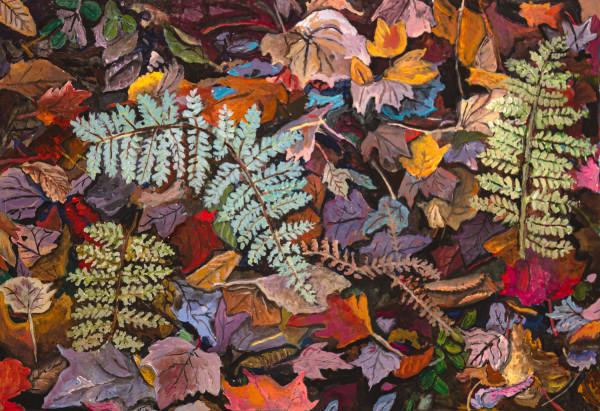 Fall Ferns by Alan Powell