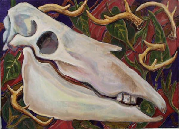 Horse Skull by Alan Powell