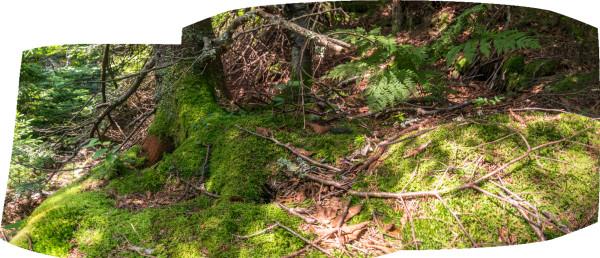 Hunter Rock 2 by Alan Powell