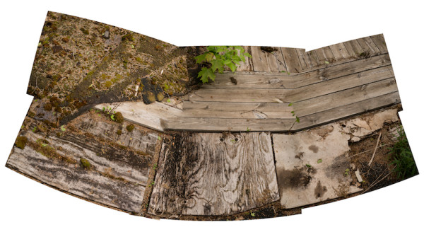 Rotten Deck by Alan Powell