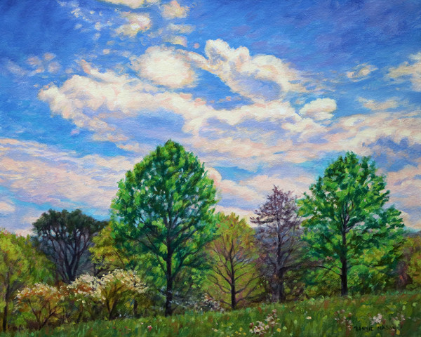 April Skies by Bonnie Mason