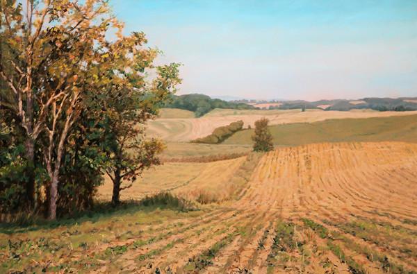 Rolling Farmland by Bonnie Mason