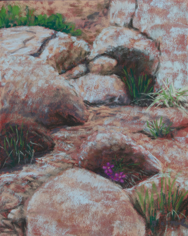 Flowers in the Rocks by Brenna O'Toole