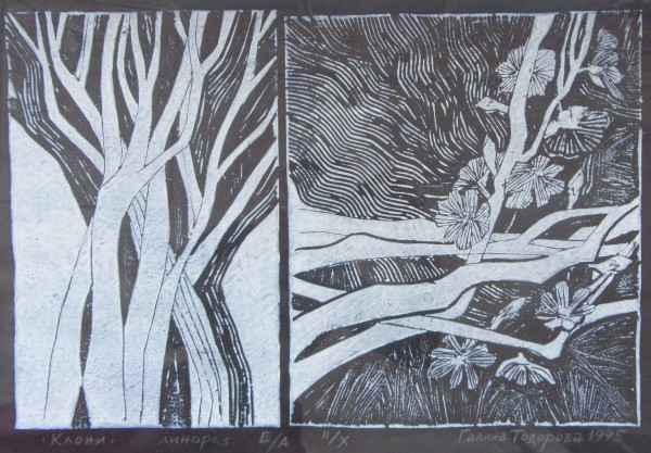 Tree Branches - black paper by Gallina Todorova