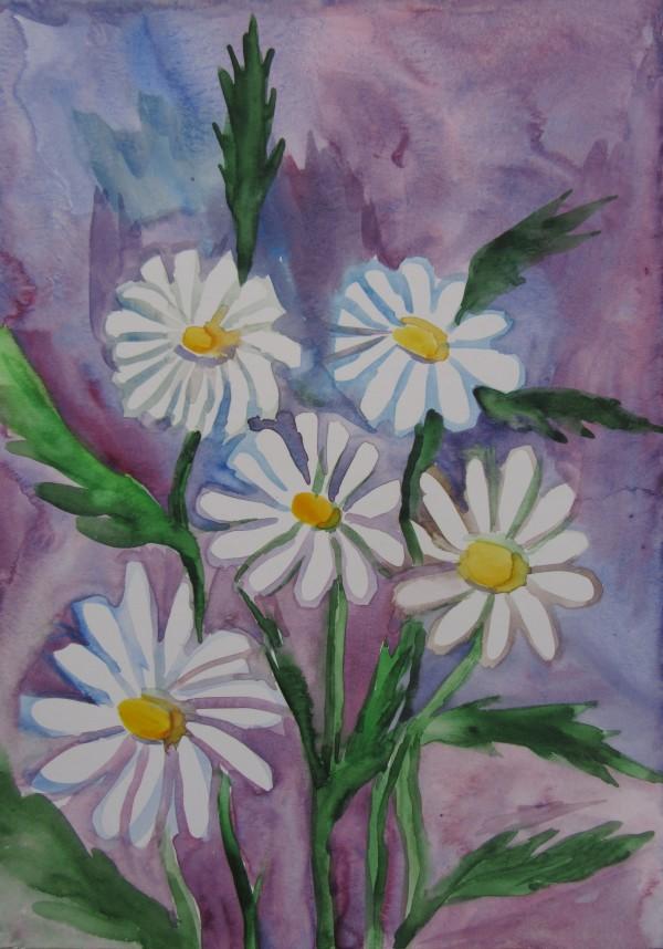 Daisies by Gallina Todorova