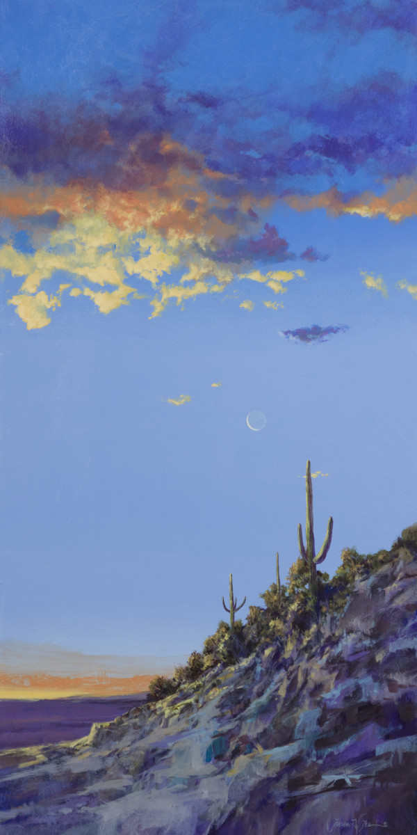 Sonora Sunrise by Lawrence Lee