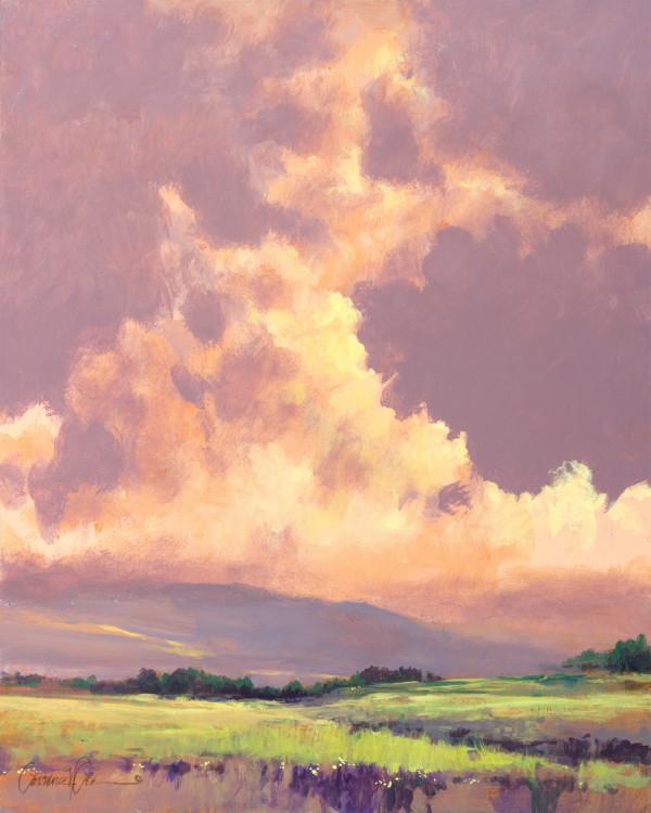 Tarde Morada by Lawrence Lee
