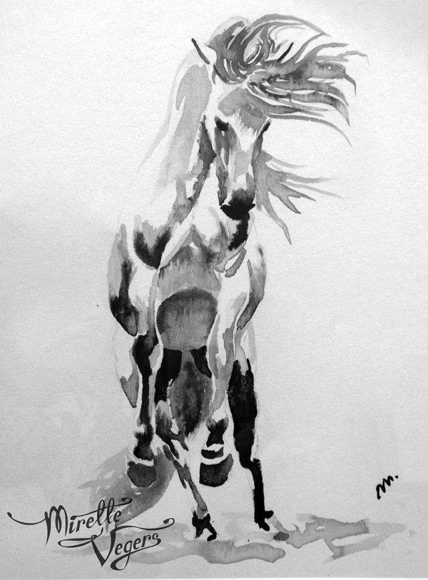 Comanche by Mirelle Vegers