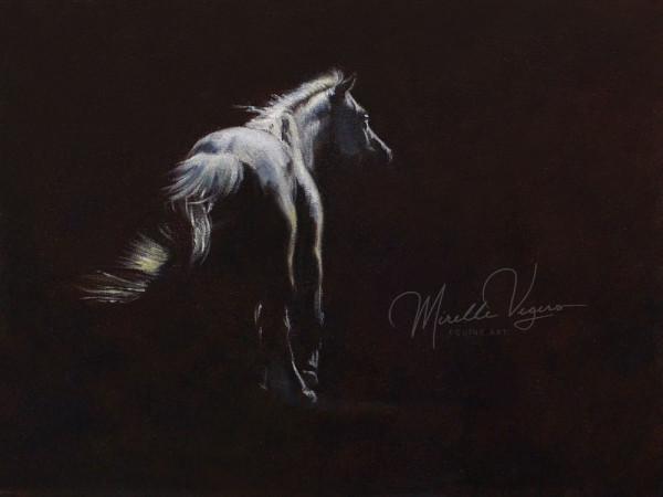 Dreamer by Mirelle Vegers