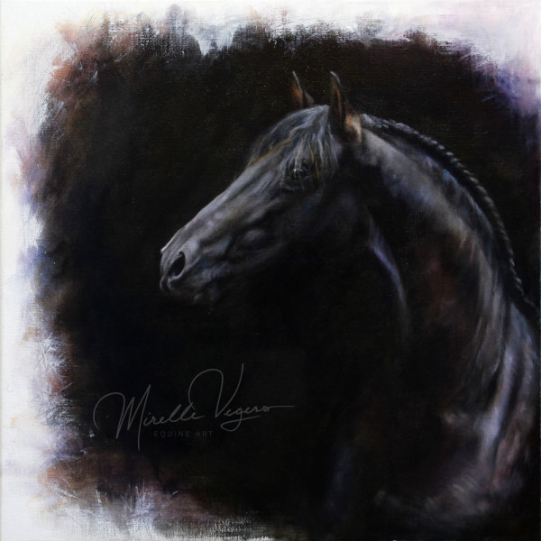 El Asombro by Mirelle Vegers