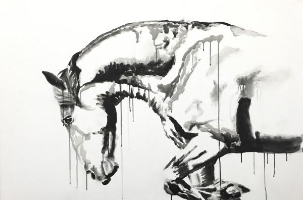 Surrender by Mirelle Vegers