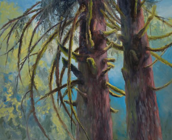 Rainier Sentries by Kathleen Moore