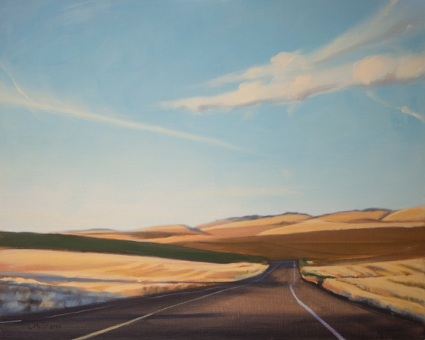 Summer Highway by Lisa McShane