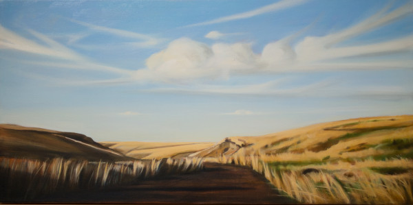 Road from Jump Off Joe by Lisa McShane