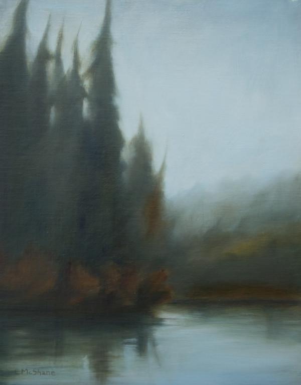 Winter Pond by Lisa McShane