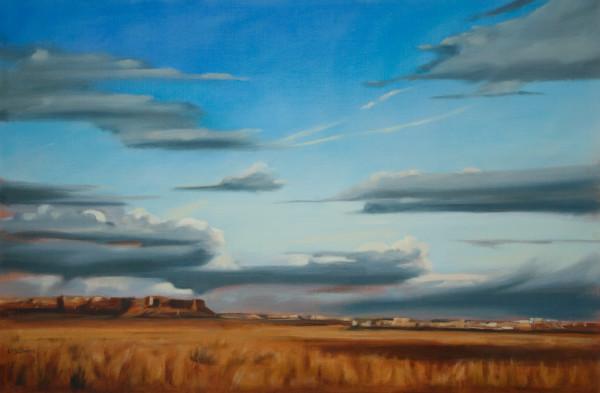 Arizona Sky by Lisa McShane