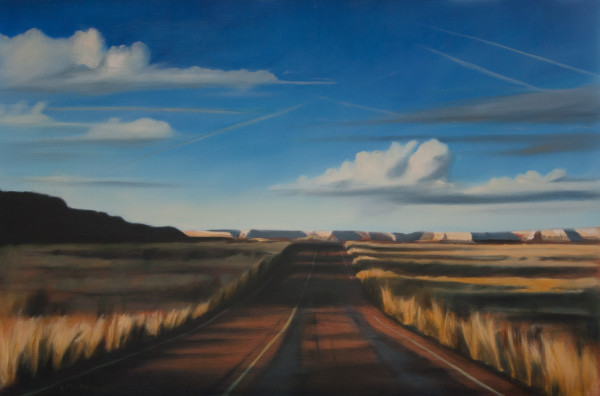 Desert Road by Lisa McShane