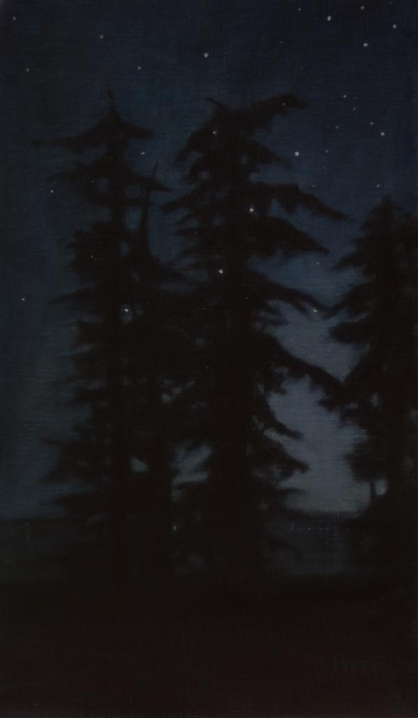 Guardians at Night by Lisa McShane