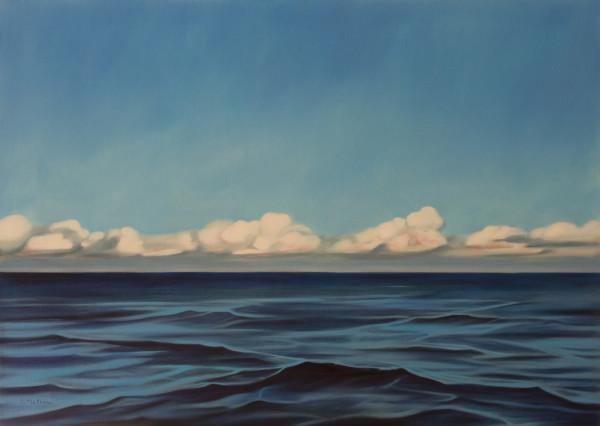 North by Lisa McShane