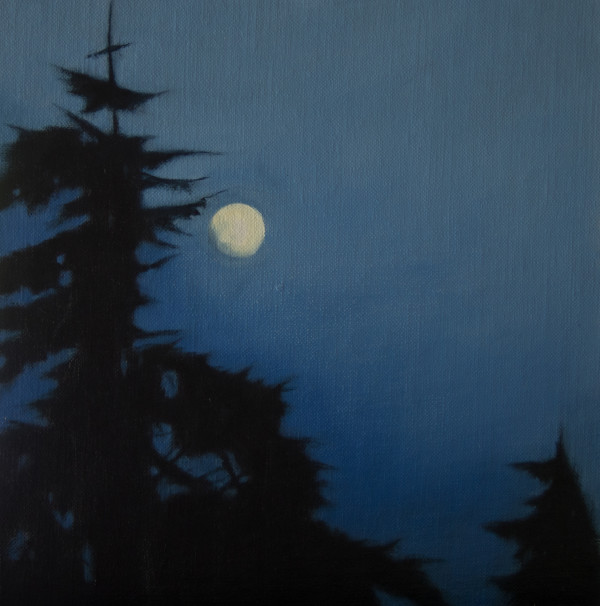 Moon Over Skagit by Lisa McShane