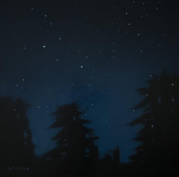 Stars above Samish Island by Lisa McShane