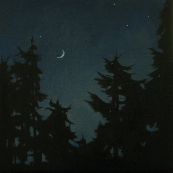 New Moon and Stars over the Forest by Lisa McShane