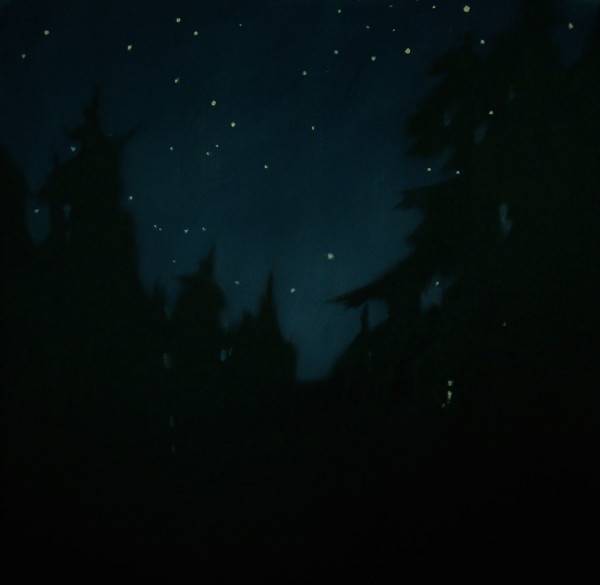 Stars through the Forest by Lisa McShane