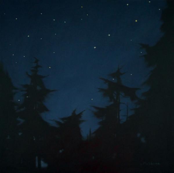 Samish Island Stars by Lisa McShane