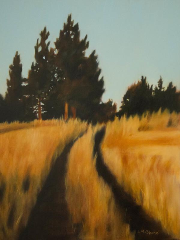 Joseph Canyon Road by Lisa McShane