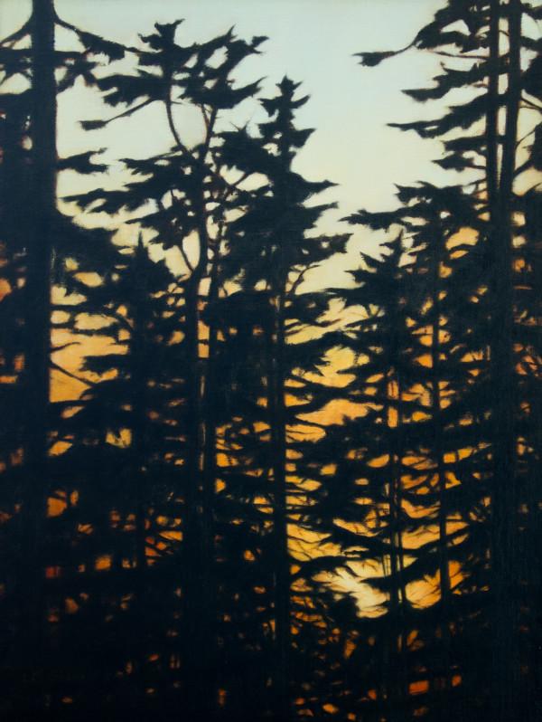 Last Light through the Guardians by Lisa McShane