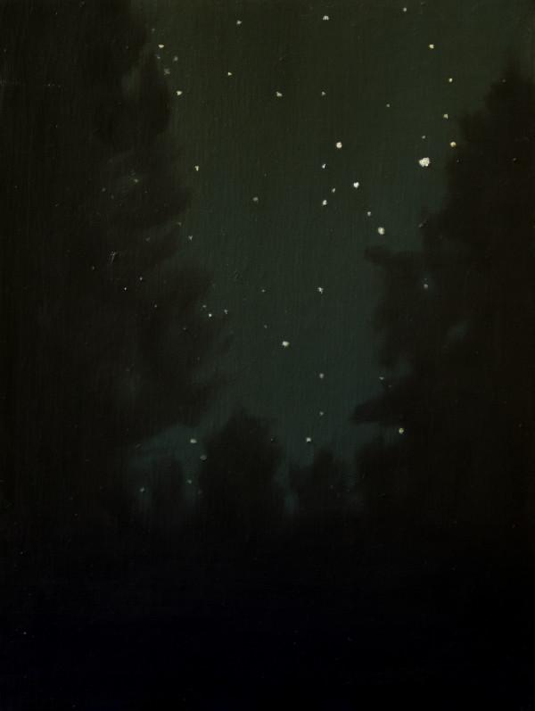 Trumbull Stars by Lisa McShane