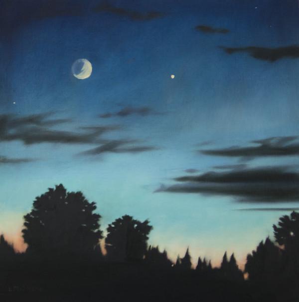 Bow at Night by Lisa McShane