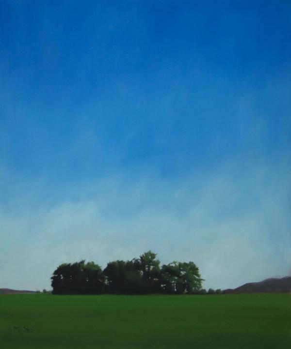 June Fields by Lisa McShane