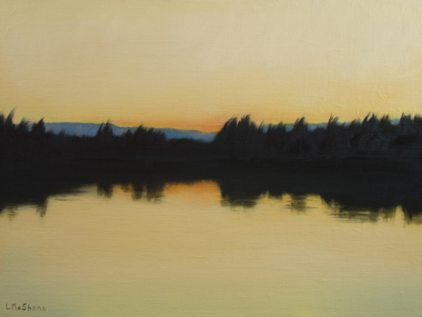 Light over the Slough by Lisa McShane