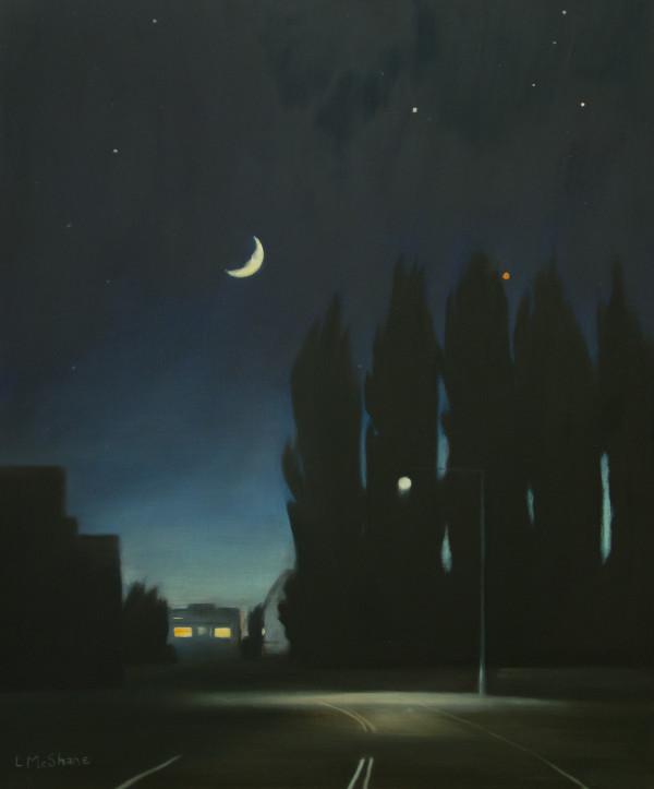 Edison at Night by Lisa McShane