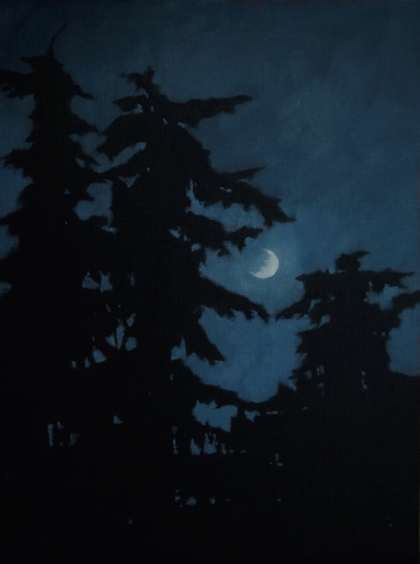 Guardians with the Moon by Lisa McShane