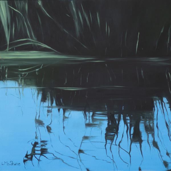 Klamath: Summer Pond by Lisa McShane