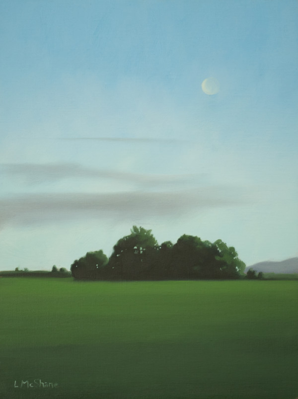 May Moon for Henry by Lisa McShane