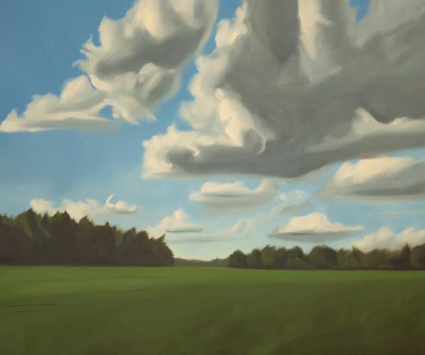 Baltic Field by Lisa McShane