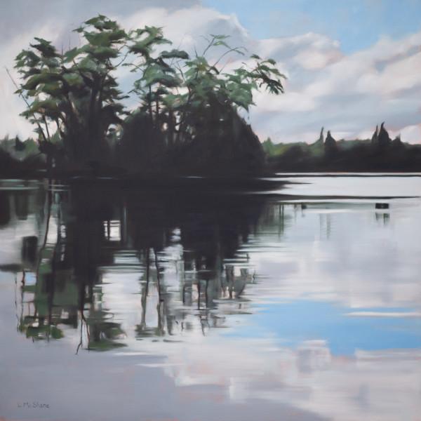 Green Lake by Lisa McShane