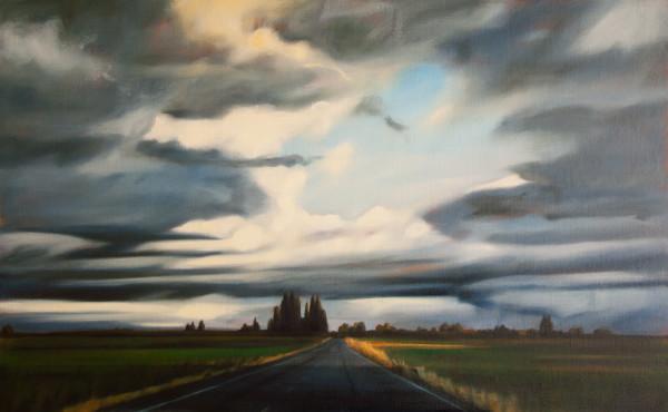 Rain Shadow, Samish Island Road by Lisa McShane