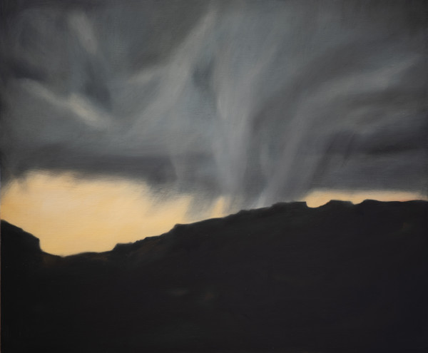 Storm in the Valley by Lisa McShane