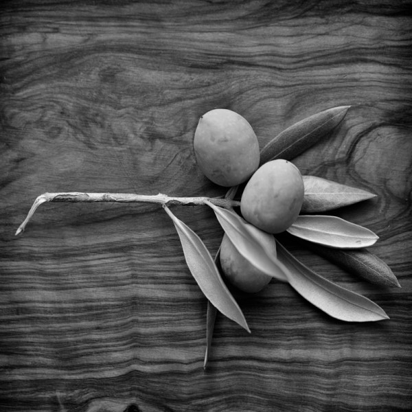 Italian Olives on Olive Wood by From The Source