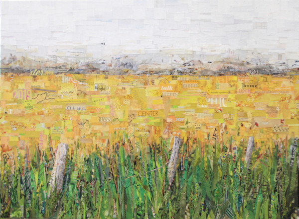 Fields of Gold by Gina Torkos
