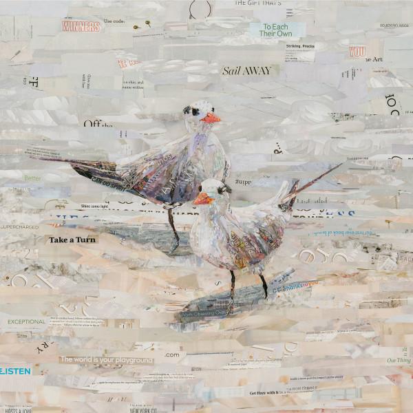 The Royal Terns by Gina Torkos