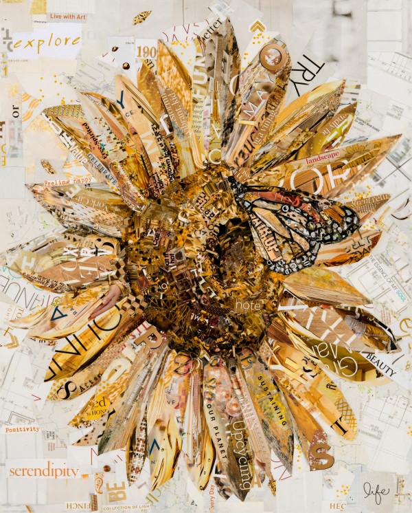 Sunflower by Gina Torkos